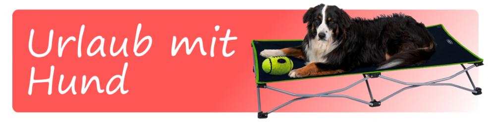 Kissen und Transport